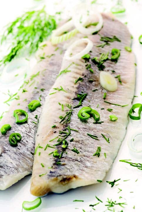 Seafood Solutions 107